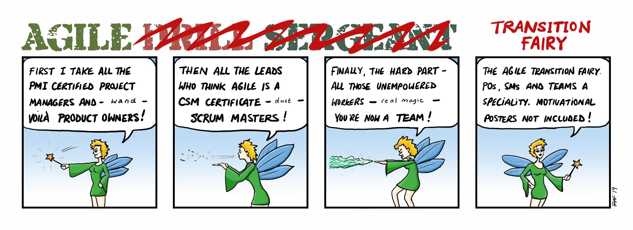 Agile Transition Fairy